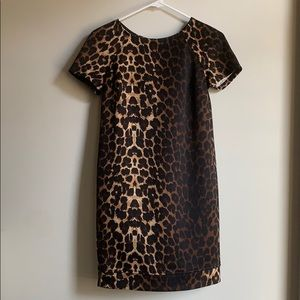 Bar III Leopard Print Dress size S - Like New